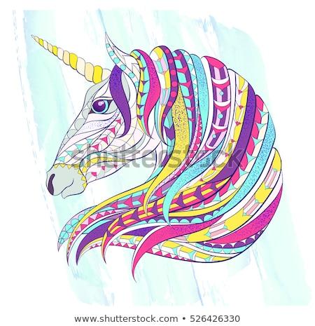 Colorido celta estrela tatuagem decoração quadro Foto stock © shawlinmohd
