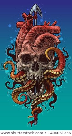 Octopus speer zwart wit illustratie kunst dieren Stockfoto © lineartestpilot