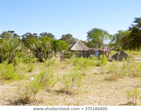 indígena · aldeia · delta · Botswana · África · edifício - foto stock © prill