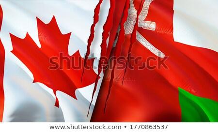 Канада Оман флагами головоломки изолированный белый Сток-фото © Istanbul2009