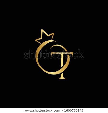 Gems T letter. Shiny diamond font. Stock photo © logoff