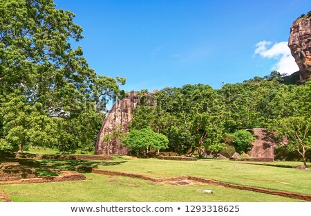 fragment of sigiriya lion rock fortress stock photo © mikko
