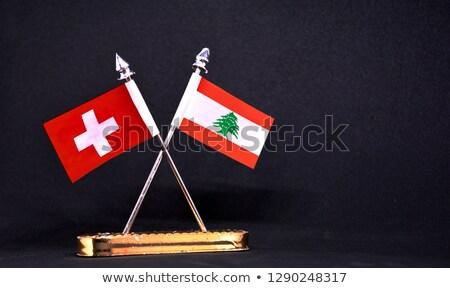 Svájc Libanon zászlók puzzle izolált fehér Stock fotó © Istanbul2009