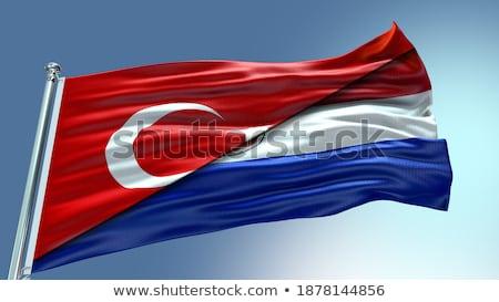 Turcja Paragwaj flagi puzzle odizolowany biały Zdjęcia stock © Istanbul2009