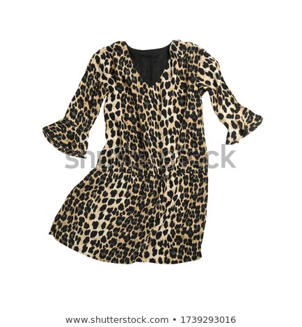 Beautiful woman in short leopard dress isolated on white Stock photo © Elnur