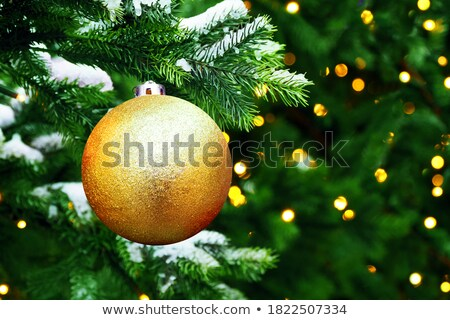 wereldbol · boom · illustratie · ontwerp · witte · wereld - stockfoto © bigalbaloo