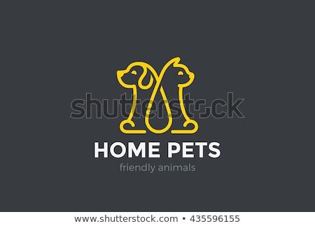 ветеринарный · знак · кошки · крест · медицина · синий - Сток-фото © djdarkflower