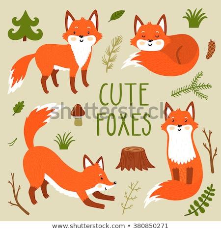 red fox cub in hands Stock photo © cynoclub