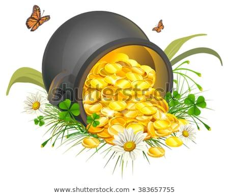 Pote moedas de ouro caldeirão ouro isolado branco Foto stock © orensila