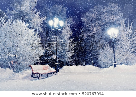 Lonely bench in a winter landscape Stock photo © CaptureLight