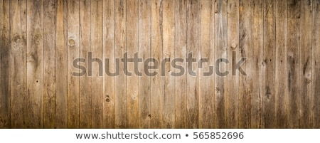 A wooden fence Stock photo © bluering
