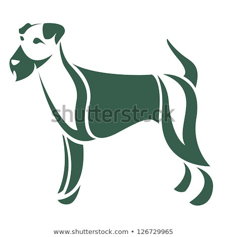 sad dog portrait in white backgroud studio Stock photo © vauvau