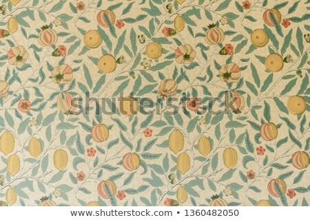 Stockfoto: Lotus · zaad · peul · Blur · blad · natuur