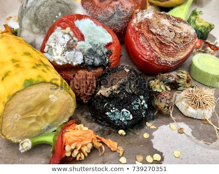 Pile of trash with papers and rotten food Stock photo © bluering