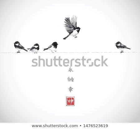 Bird sitting on a branch stock photo © julianpetersphotos