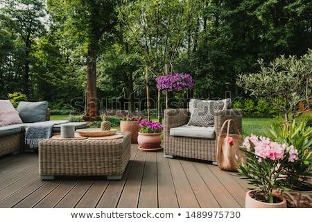 wooden garden furniture in garden  Stock photo © compuinfoto