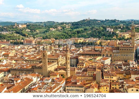 View of Duomo at historic center of Florence Stock photo © TasiPas