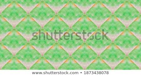 縞模様の · 魚 · ヴィンテージ · 刻ま · 実例 · 百科事典 - ストックフォト © cidepix