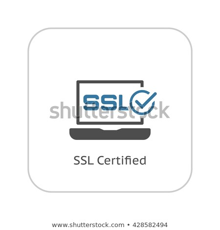Ssl сертифицированный защиту икона дизайна изолированный Сток-фото © WaD