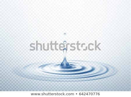 transparent water ripple vector background stock photo © SArts