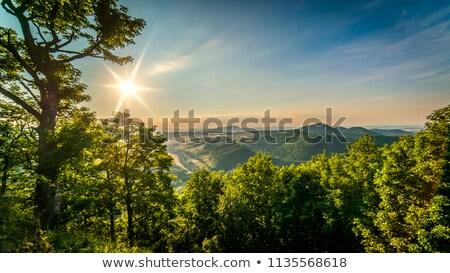 Zonsondergang gras landschap schoonheid zomer bergen Stockfoto © Hochwander