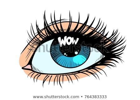 Wow olho feminino olhos azul Foto stock © studiostoks