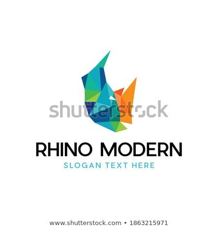 cartoon simple sketch african rhino with big horns, vector Stock photo © Hipatia
