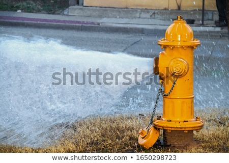 Fire hydrant on pavement Stock photo © bezikus