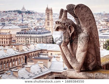 Notre · Dame-katedrális · tető · Franciaország · város · Párizs · templom - stock fotó © givaga