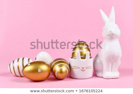 белый · красивой · кролик · Пасхальный · заяц · свет · окна - Сток-фото © magann