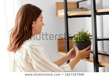 woman arranging flowers. Stock photo © IS2