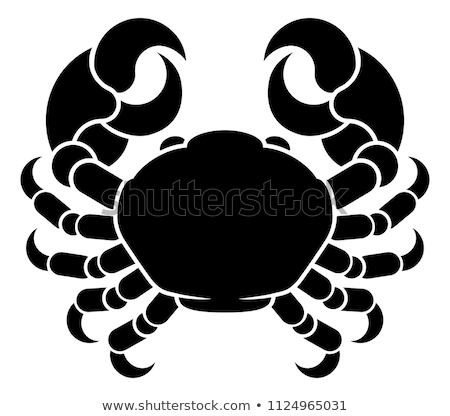 Crab Cancer Horoscope Birth Sign Stock photo © Krisdog