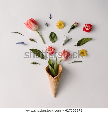 Fagylalt kúp természetes ízek friss hozzávalók Stock fotó © unikpix