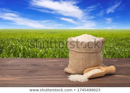 Uzun pirinç ahşap kepçe çuval bezi çanta Stok fotoğraf © Digifoodstock