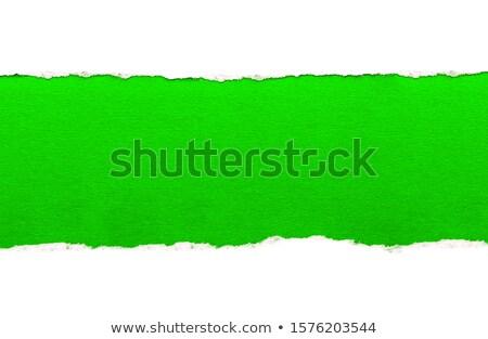 Yeşil yırtık kağıt çim eğim ağaç Stok fotoğraf © barbaliss