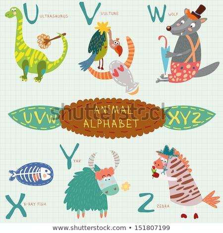 Tier Alphabet Englisch Briefe cute Karikatur Stock foto © zsooofija