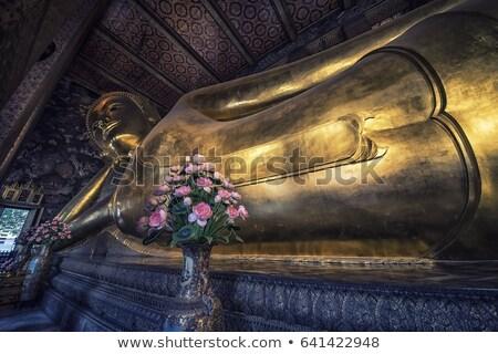 adorar · guardião · espírito · Tailândia · folha · verde - foto stock © boggy