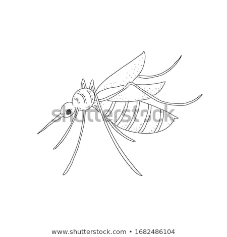 Stop Mosquito Cartoon Character With Prohibited Symbol Stock photo © hittoon