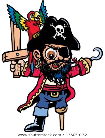 Stok fotoğraf: Cartoon Angry Pirate Boy