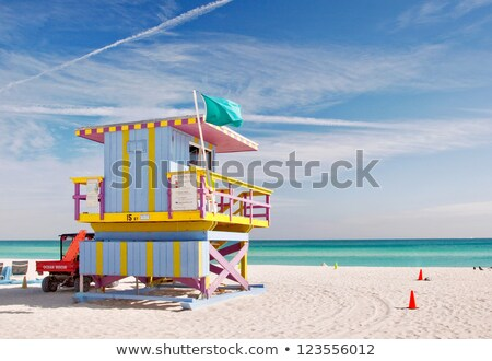 Oceano ilha salva-vidas casa ilustração praia Foto stock © colematt