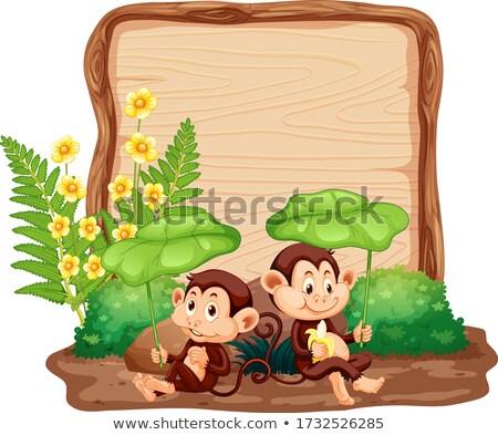 Pokładzie szablon goryl ogród ilustracja charakter Zdjęcia stock © colematt
