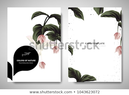 black wedding card with flower decoration template Stock photo © SArts