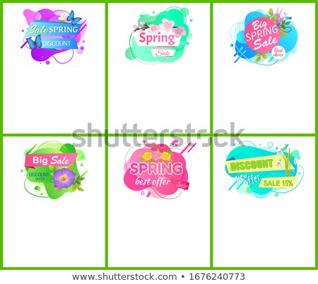 Spring Best Offer Promo Tag Springtime Discount Foto stock © robuart