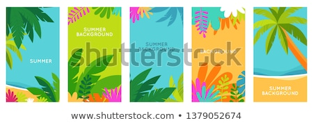 Summer or spring leaves banner vector concept Stock photo © heliburcka
