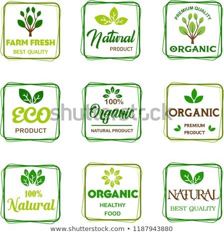 100 végétarien étiquette vignette symbole nature Photo stock © SArts