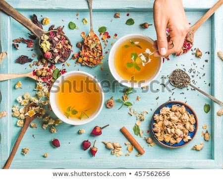 Dois copo chá medicinal orégano lavanda marrom Foto stock © Illia