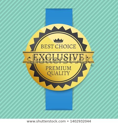 satisfação · do · cliente · azul · vetor · ícone · projeto · digital - foto stock © robuart