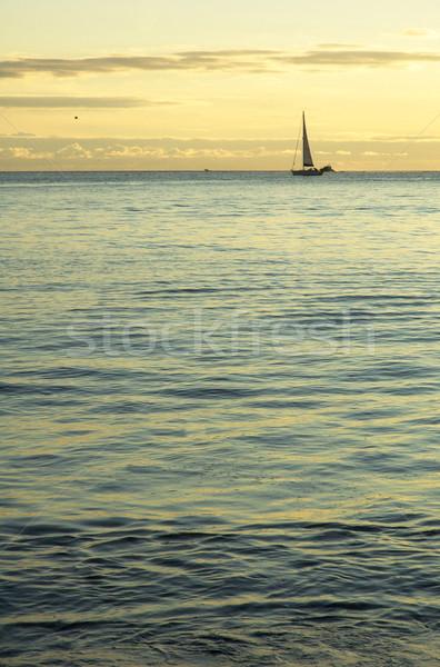 Sail at horizon Stock photo © t3mujin