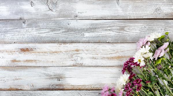 Mista fiori fondo angolo bianco Foto d'archivio © tab62