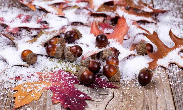 Stagionale autunno foglia ghianda decorazioni neve Foto d'archivio © tab62